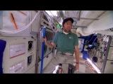 Теория большого взрыва 7 сезон Трейлер все серии на Nenudi.net с 26 сентября смотри онлайн серия 1,2,3,4,5,6,7,8,9,10,11,12,13,14,15,16,17,18,19,20